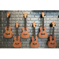 UKULELE ZARSOLE UK-24